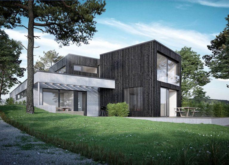 Modernes-Wohnhaus-Holzrahmenbau-Zimmerei-Wissel-05